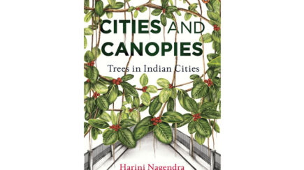 Cities and Canopies: Tress in Indian Cities