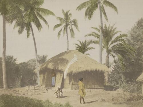 Fig. 2. The Bengal Hut